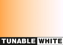 tunable white